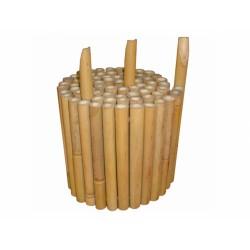 Plůtek bambusový